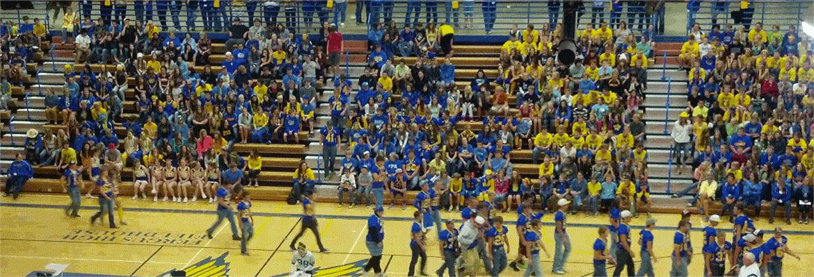 FHS Homecoming Pep Assembly photo of student body